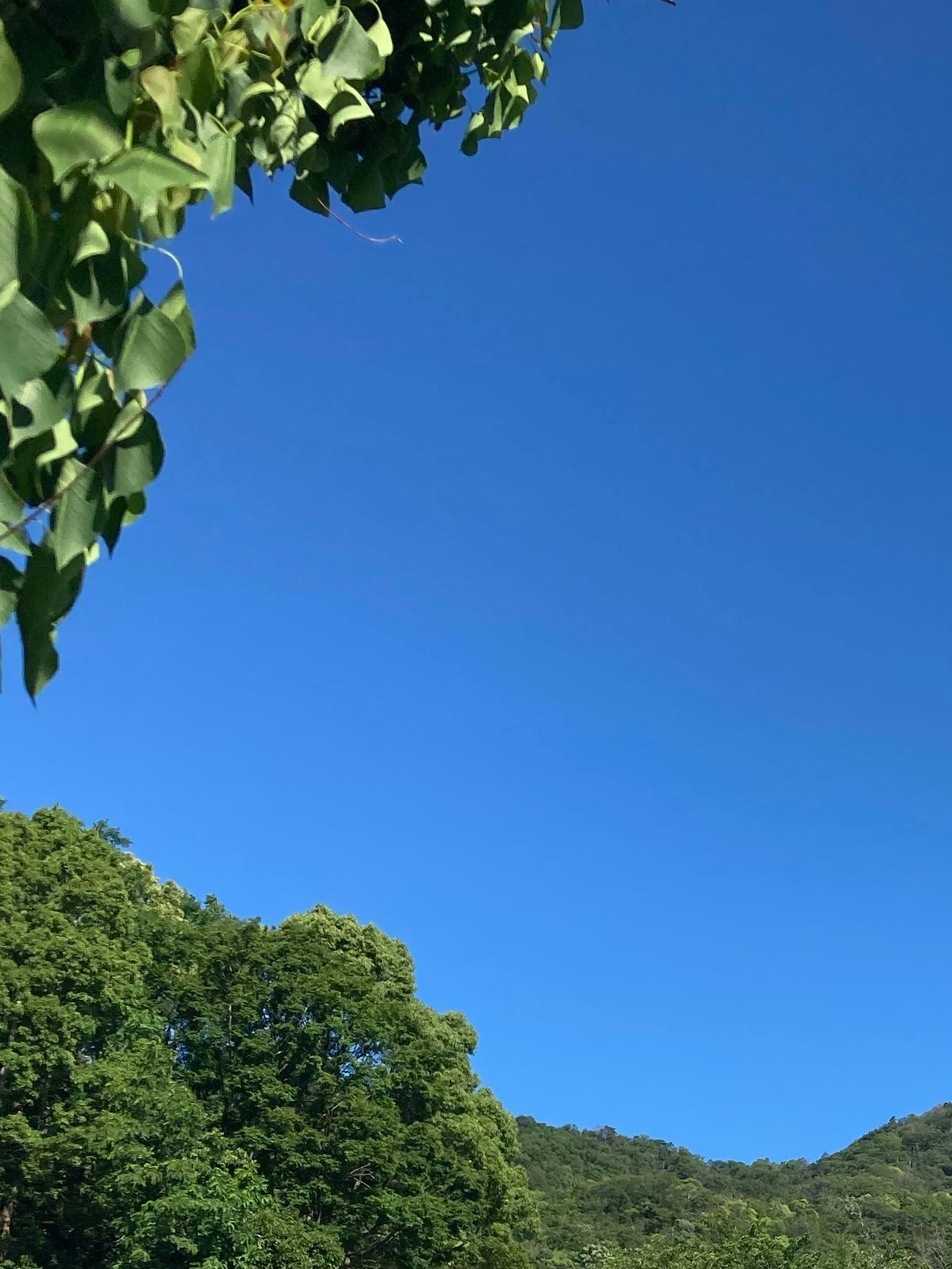 梅雨入り間近の鮮やかな青空!